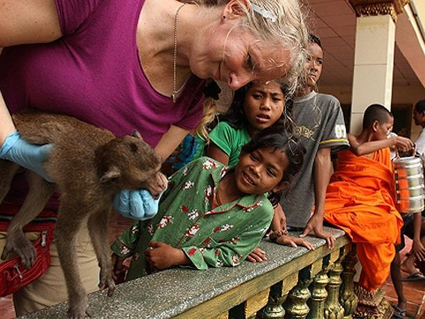 Urban Macaques in Cambodia