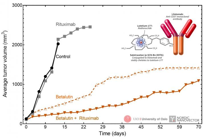 Synergistic effect of 177Lu-lilotomab in combination with rituximab.