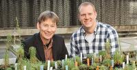 Genome Duplication Aids Plant Regeneration