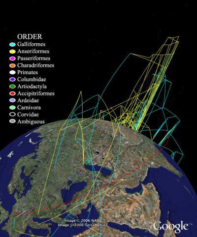 Google Earth Technology to Track Avian Flu