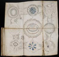 An Illustration from the Voynich Manuscript