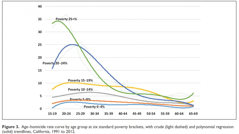 Age-Homicide Rate Curve