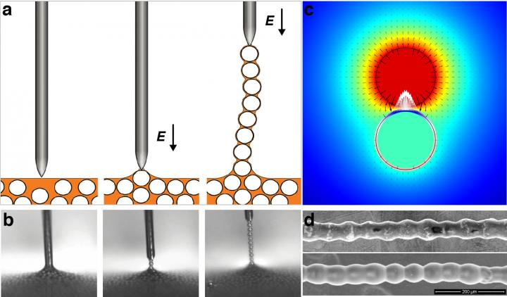 Colloidal Chain Pulled from Dispersion