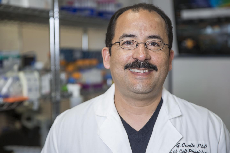 Dr. Luis Cuello Researches Potassium Channels at TTUHSC