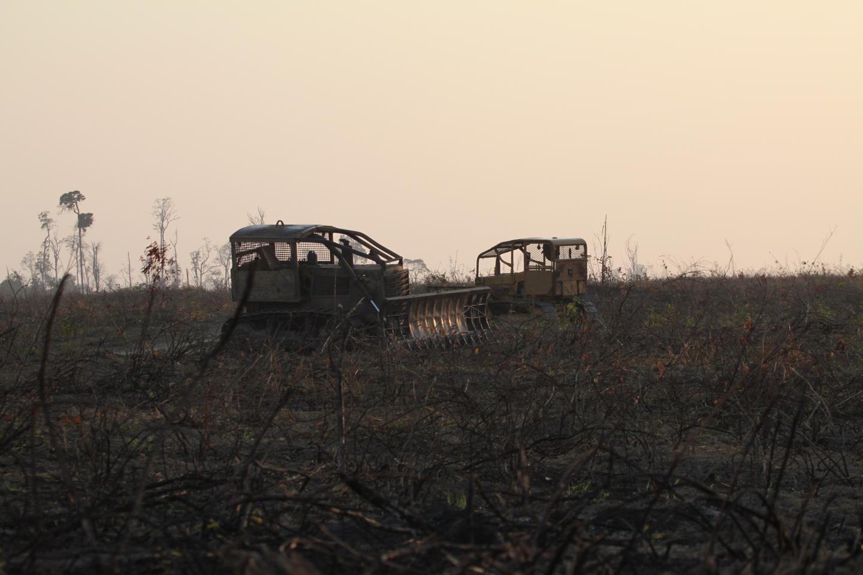 Deforestation, Paragominas, State of Para