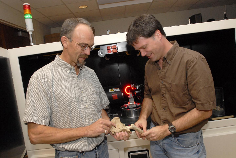 Professors Studying Bones