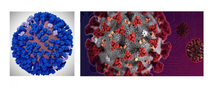 Influenza/Coronavirus Simulations