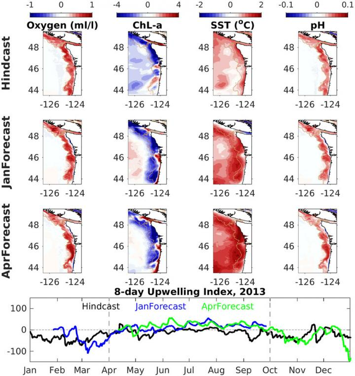 Seasonal Ocean Forecast