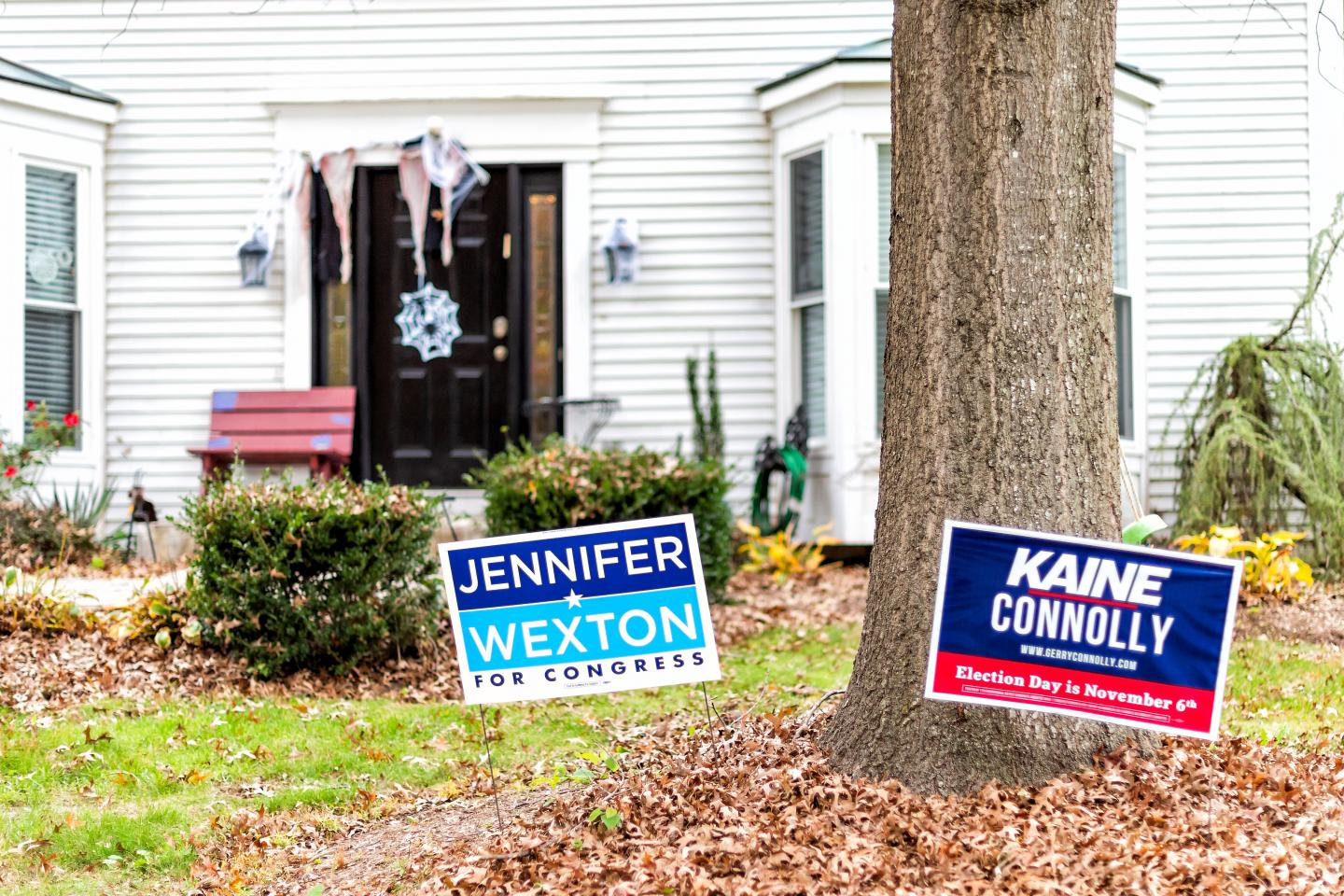 Politcal Signs