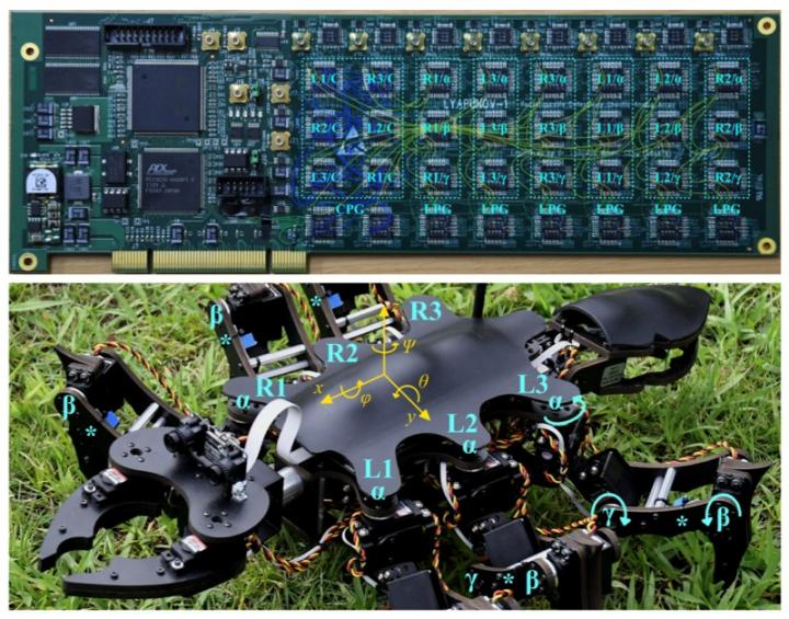 Views of the Circuit Board Implementing the Controller and of the Robot
