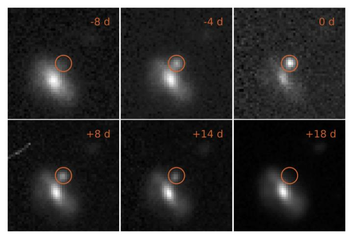 Images of a Transient Event, from 8 Days before to 18 Days after Peak Brightness