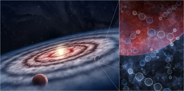A Protoplanetary Disk and the Molecules Within