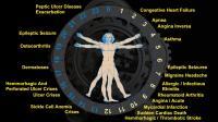 The Circadian Clock (2 of 2)