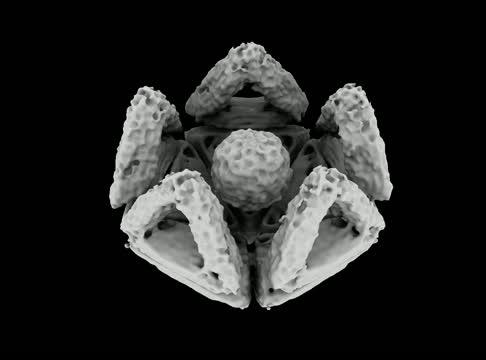 Open nano-shell