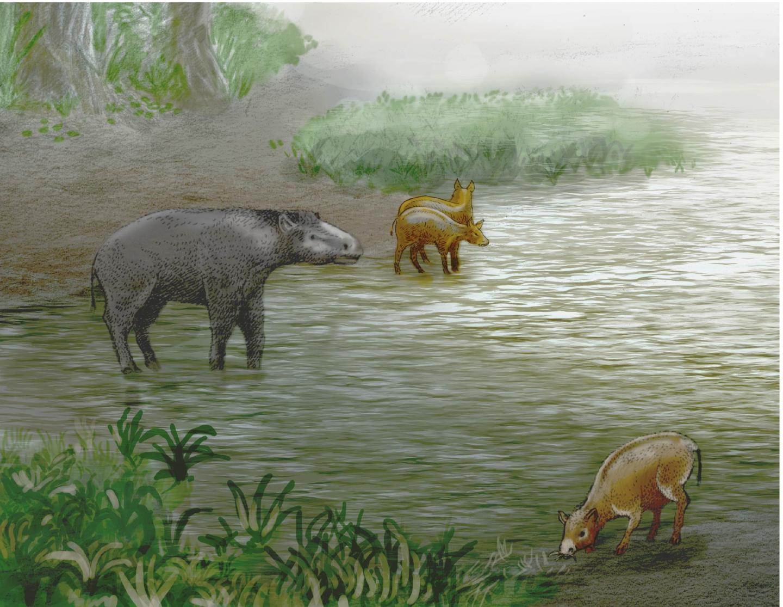 Lake Zambrana, 37 million years ago