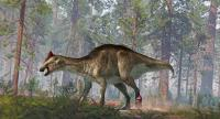 A foot tumour and two tail fractures complicated the life of this hadrosaur