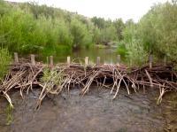 Beaver Dam Analog Built on Oregon's Bridge Creek