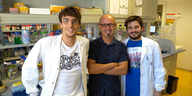 Jordi Pujols, Salvador Ventura and Samuel Peña at the UAB
