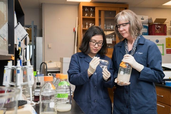 Understanding Marine Microbes