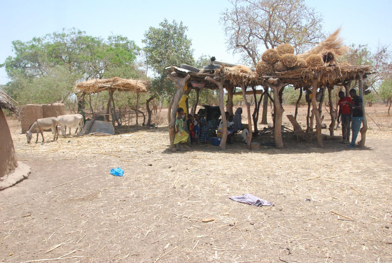 Fulani Village