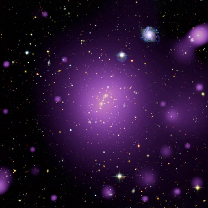 Multi-Wavelength View of Galaxy Cluster XLSSC006