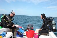 Research Divers at the Seaweed Farm off Puerto Rico