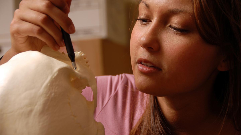 Measuring Geometric Morphometrics on a Human Skull