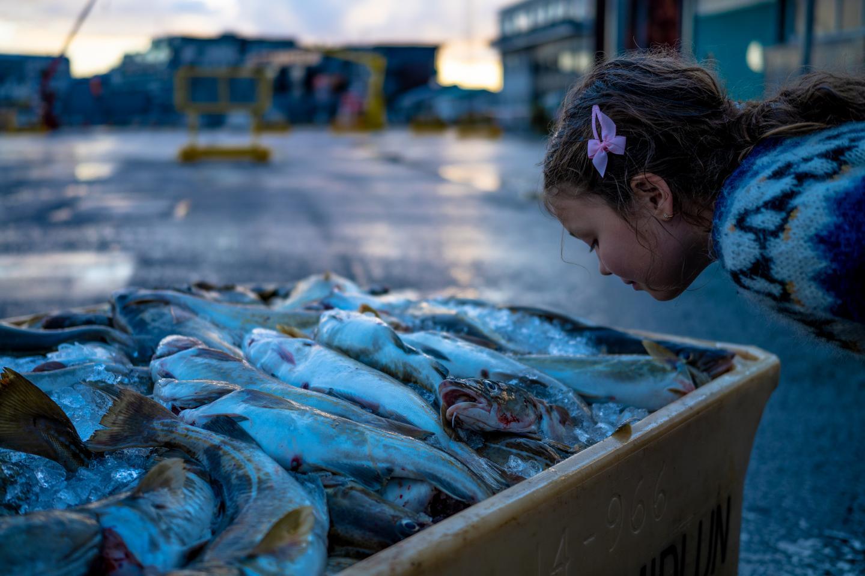 Child Smelling Fish