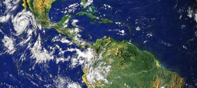 Bridge Species Lead Expansion from Tropics