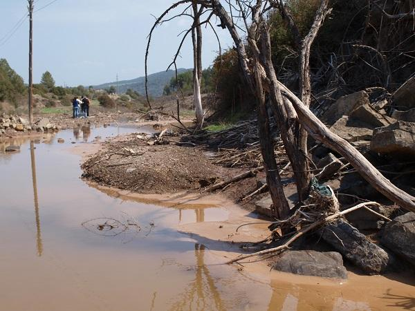 River Salinization