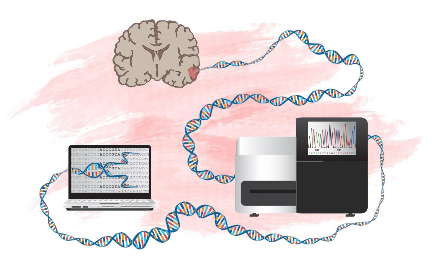How to Identify Genes that Can Drive Development of Brain Tumors
