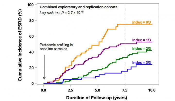 Cumulative Incidence of ESRD According to Index of Protection of Three Proteins