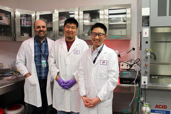 USask researchers (left to right) Drs. Juan Ianowski, Xiaojie (Jay) Luan and Julian Tam