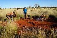 Researchers Get to the Bottom of Fairy Circles (1 of 3)