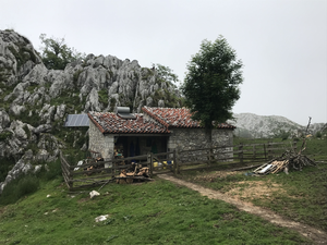 Traditional artisanal cheese factory