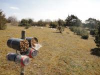 View on Grassland
