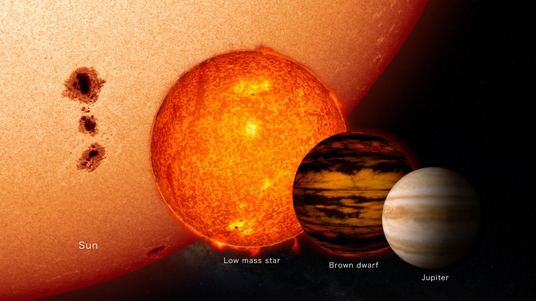 Size Comparison of Stars, Brown Dwarf, Jupiter
