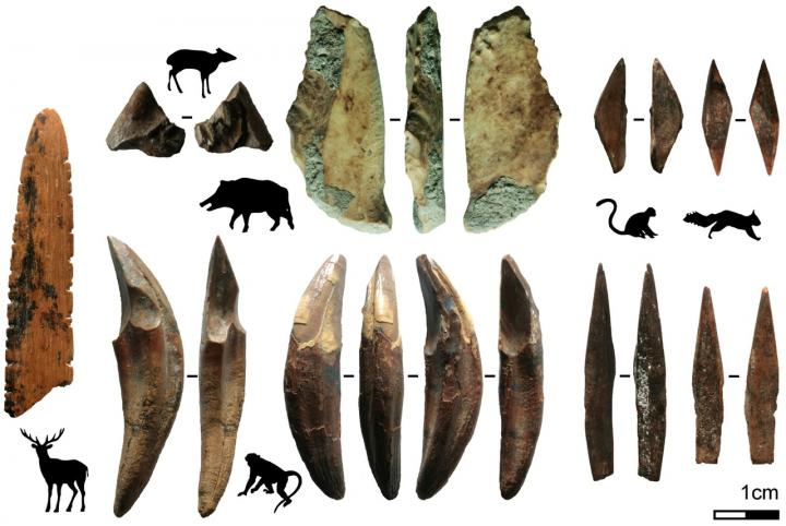 Bone Tools and the Animals from Which They Were Produced from Fa-Hien Lena