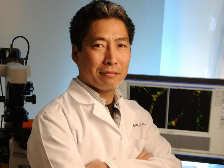 Masanobu Komatsu, Sanford-Burnham Prebys Medical Discovery Institute