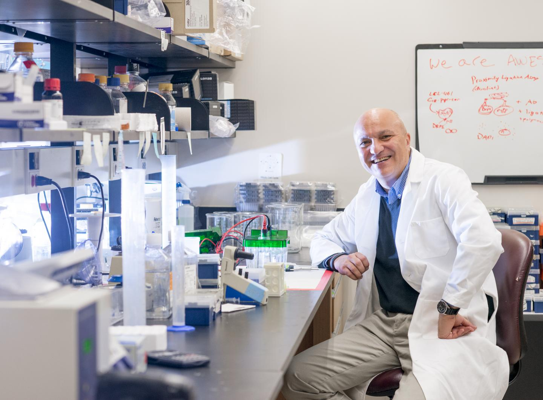 Hollings Cancer Center Researcher Besim Ogretmen