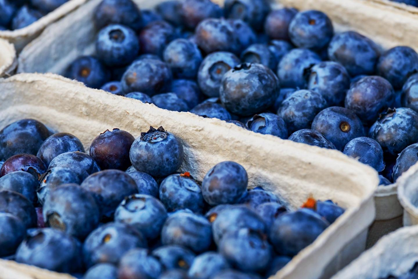 New Compound from Blueberries