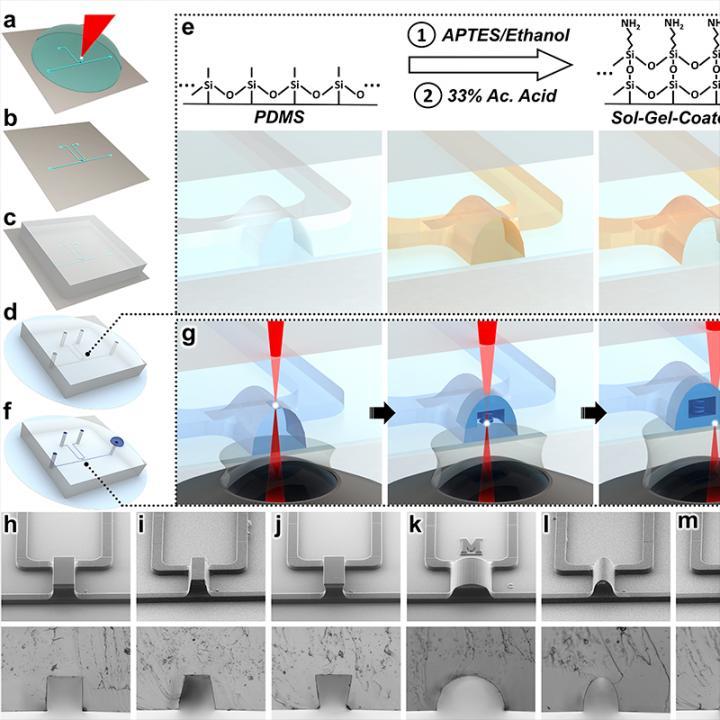 Sol-Gel-Based In-Situ Direct Laser Writing Concept