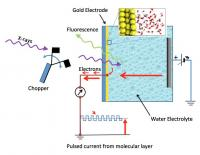 Water on Gold Electrodes