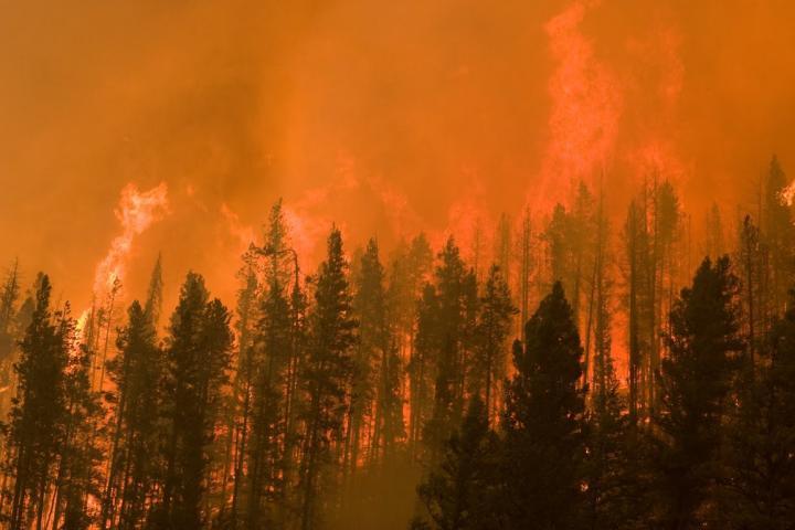 Idaho Wildfire