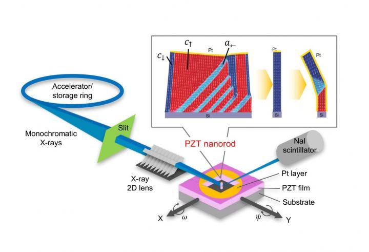 Domain Pattern Control in Ferroelectric Pb(Zr,Ti)O3 Nanorods