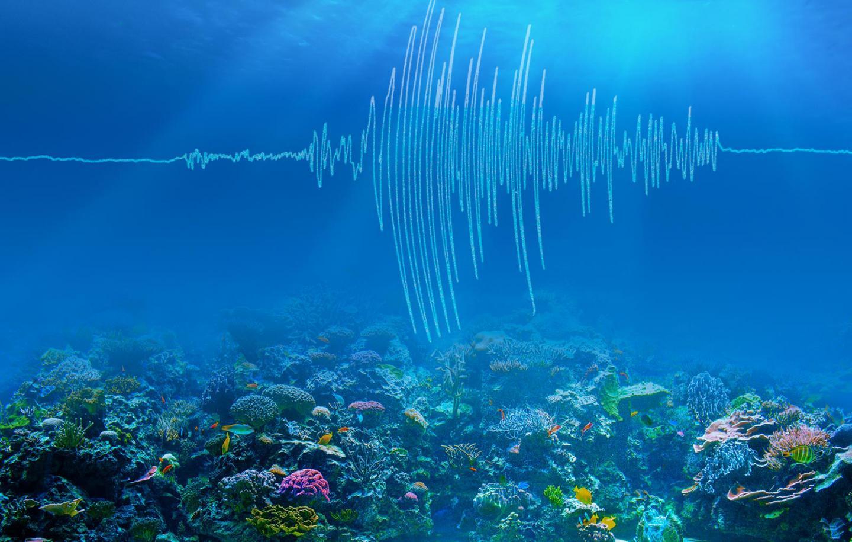 Ocean earthquakes