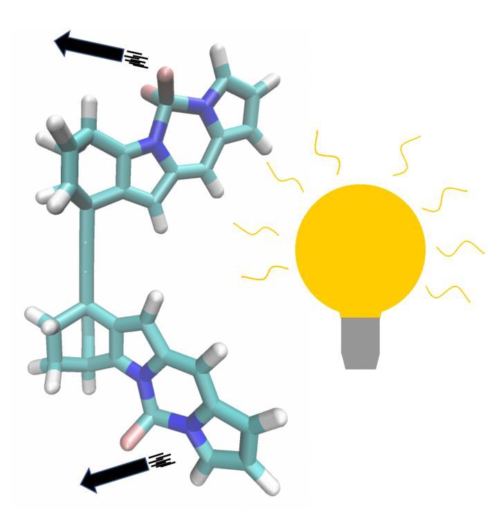 A Superfast Molecular Motor
