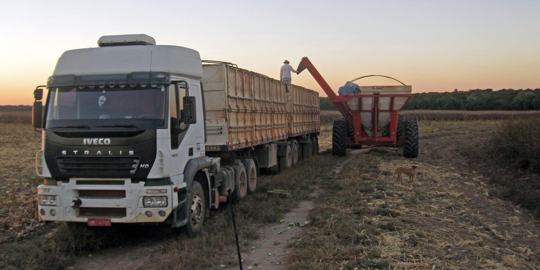 Farming in Brazil