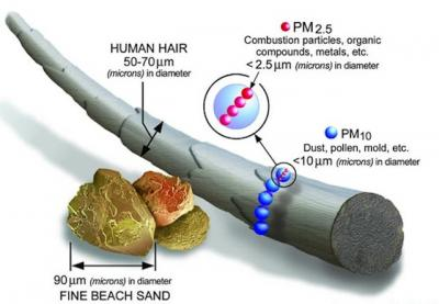 Inhalable Particles