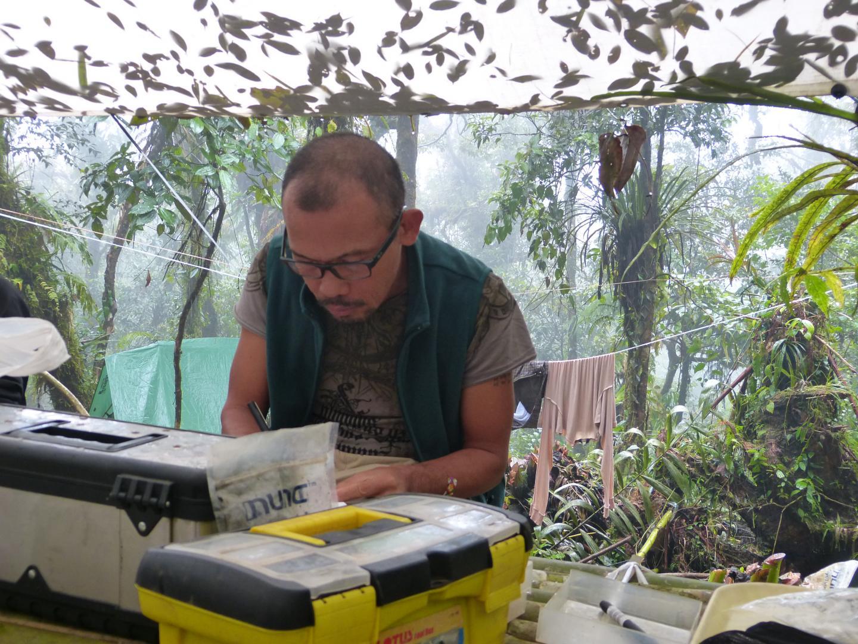 Danny Balete fieldwork
